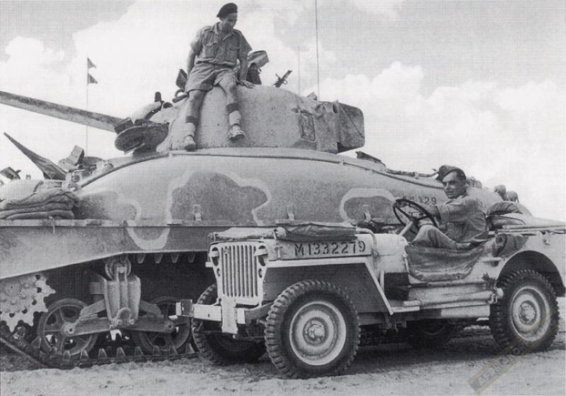 Sherman Alamein - (READY!!!!!!) - Page 2 36337011