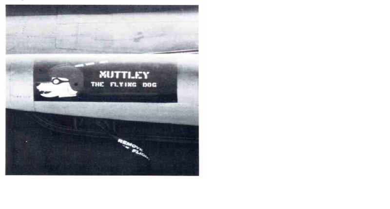 Merry Christmas Mutley10