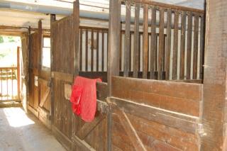 propriété à vendre !!! idéal chevaux! Box_110