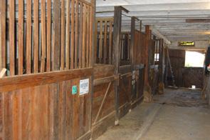 propriété à vendre !!! idéal chevaux! Box_210