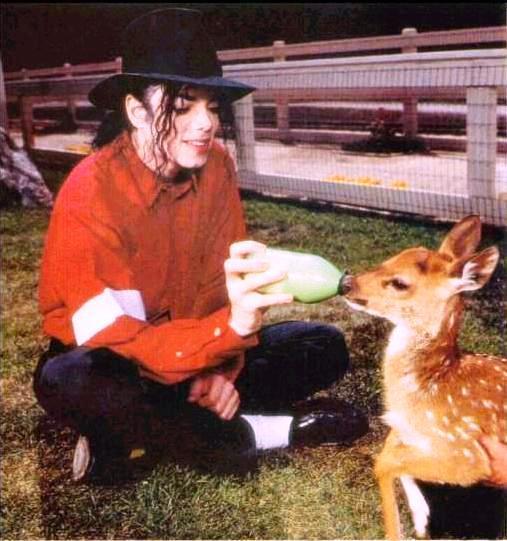 Michael e gli animali!! - Pagina 3 5dange10