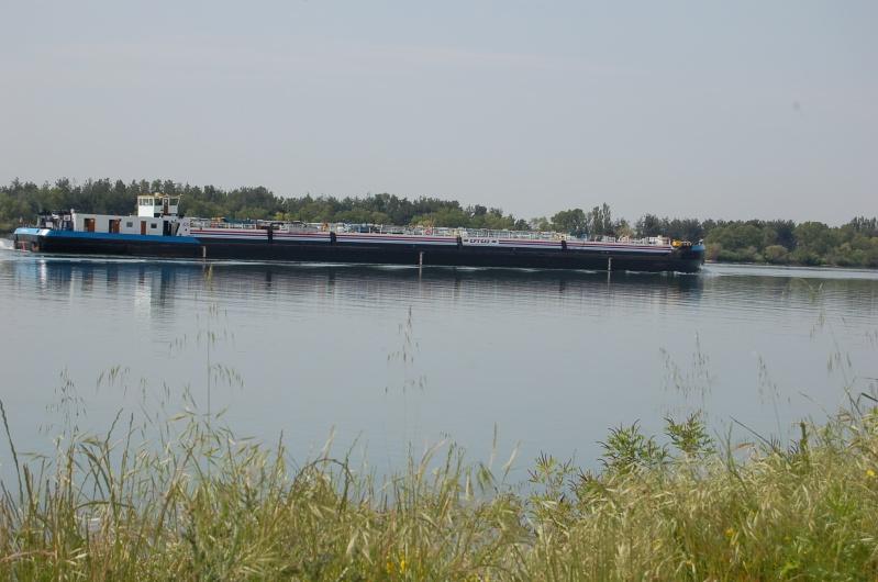 Quelle barque+moteur pour le rhone ? Dsc_0010