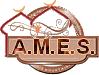 >>> AMES <<< Sans_t11