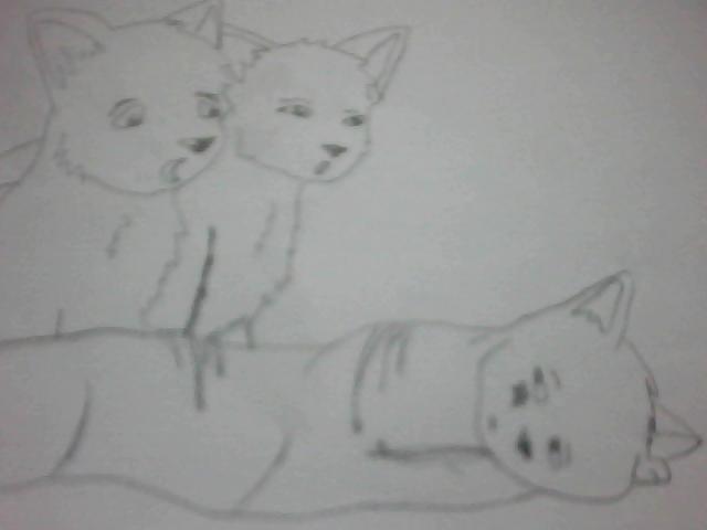 Mes dessins de BD et autres... Etoile10
