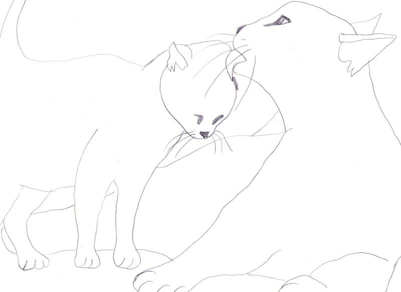 Mes dessins de BD et autres... Img00910