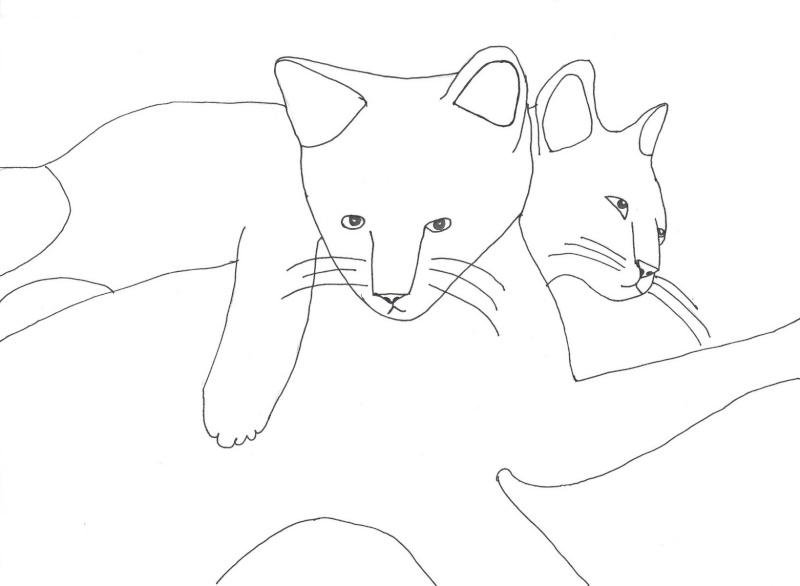 Mes jolis petits dessins...=D Numari12