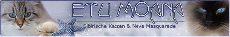 NOUVEAU : présentation du bandeau du forum Etu_mo10