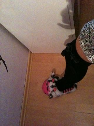 Čarape/najlonke/štramplice Img_0010