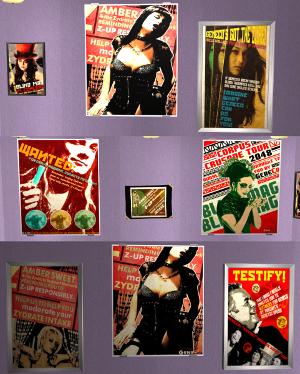 Картины, постеры, плакаты Lsr256