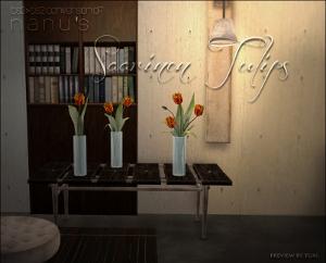 Цветы для дома - Страница 6 Lsr457