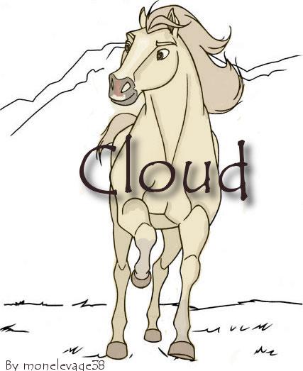 Cloud l'étalon Cloud10
