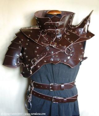 Armor Section Leathe12