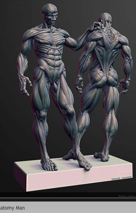 LOGICEL 3D POUR LE MODELAGE 2009-113
