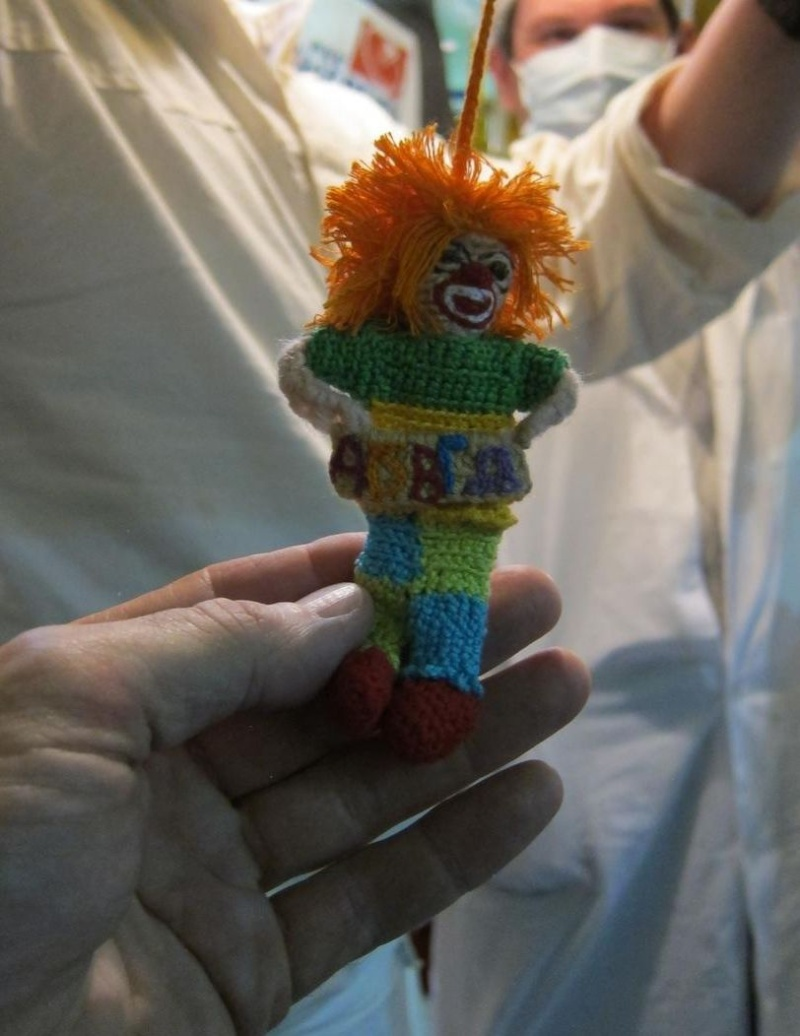Expedition 34 - Soyouz TMA-07M Mascot10