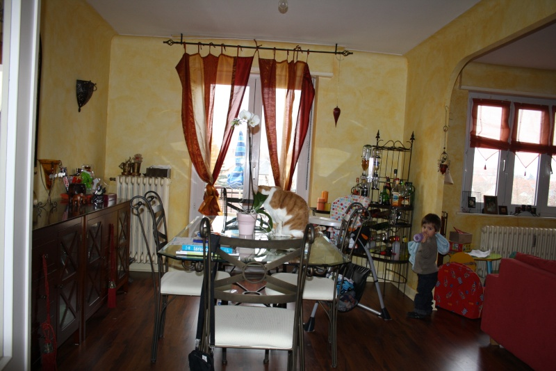Changer le style de mon salon Img_7910