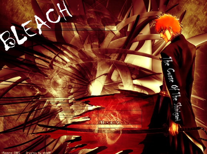 Bleach: The Curse Of The Shinigami
