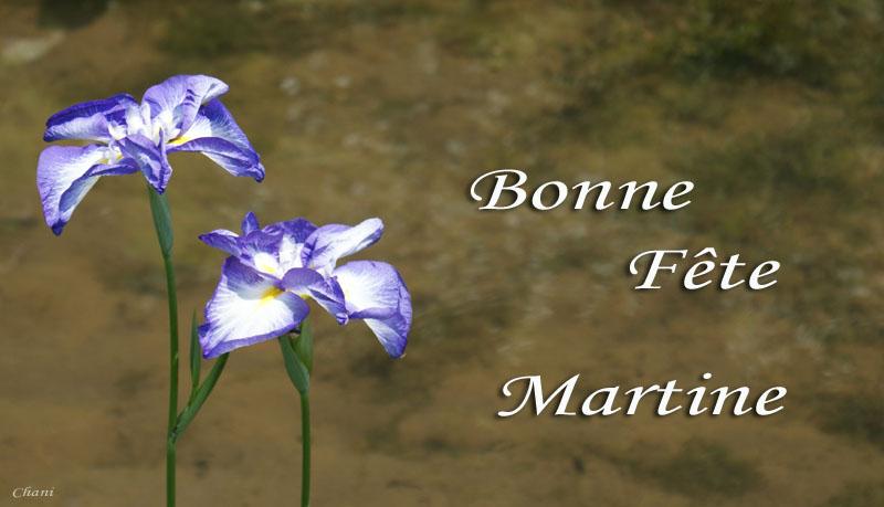 Bonne Fête Martine Martin10