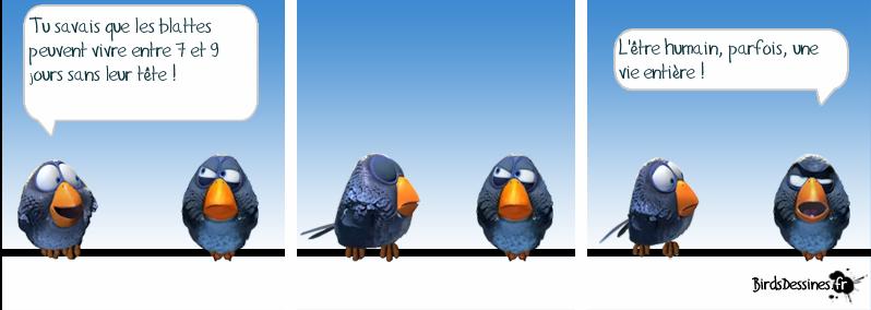 Les Birds Dessinés 13323210