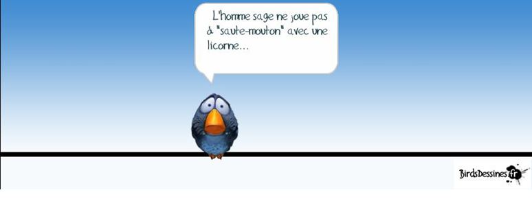 Les Birds Dessinés Birds10