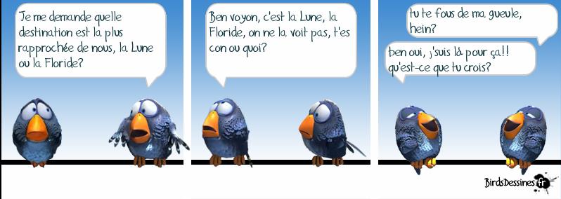 Les Birds Dessinés La-lun10