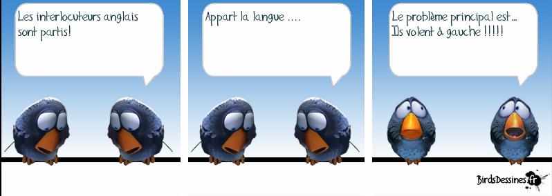 Les Birds Dessinés Les-vo10