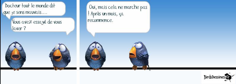Les Birds Dessinés Mauvai10