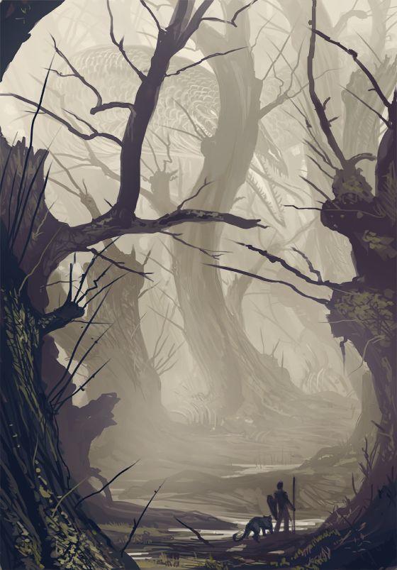 Le vieil arbre tordu de la forêt de la bravoure Ce7b6510