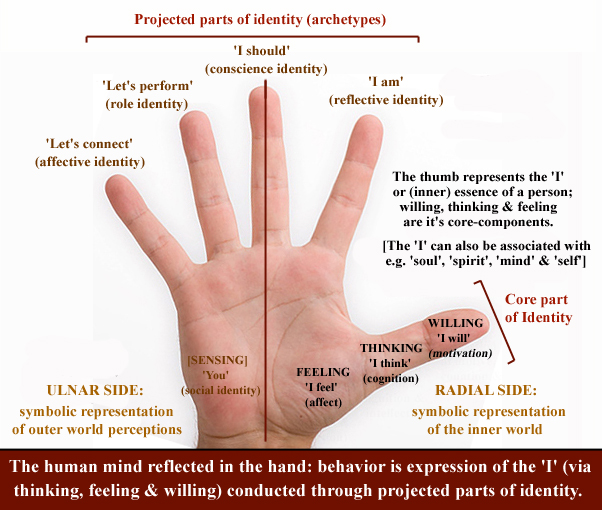 I - The thumb represents the inner essence of man! - Page 2 Thumb-11