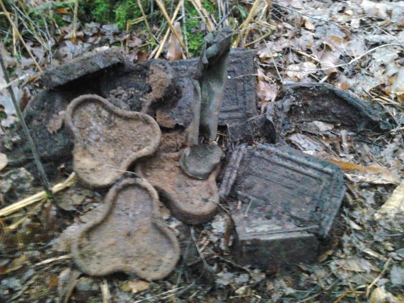 fouilles de ce week end dans foret Photo223