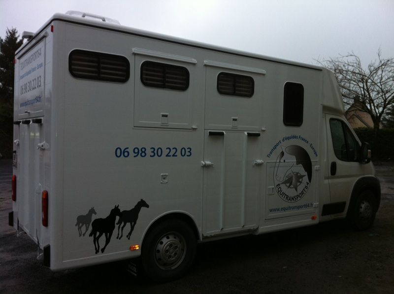 EQUITRANSPORT64: Leader du transport de chevaux 310