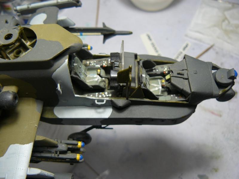 helicos P1100010