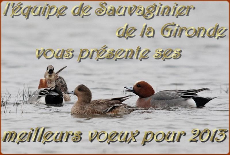 Une bonne année à tous nos chers membres :) - Page 3 Voeux_10