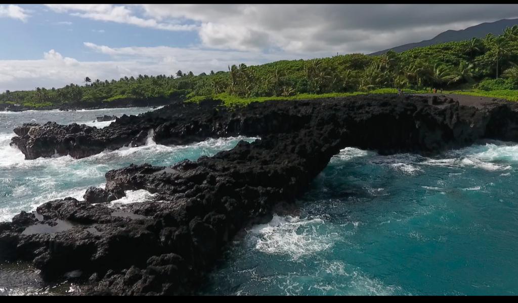 Maui, Hawaii - Page 2 310