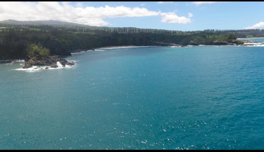 Maui, Hawaii - Page 2 Honolu16