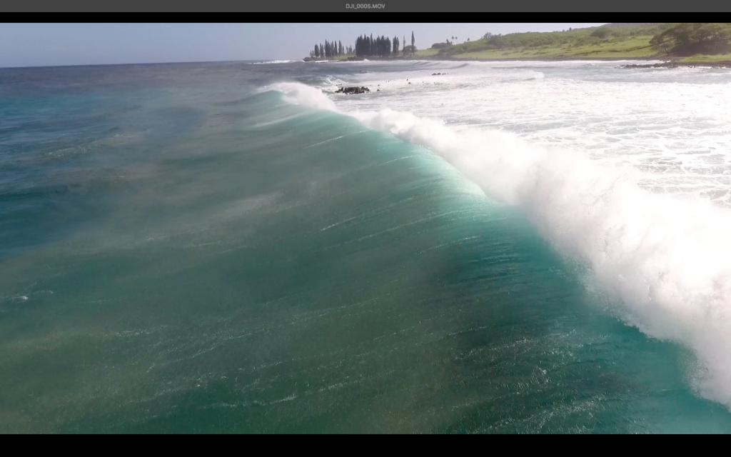 Maui, Hawaii Kookib10