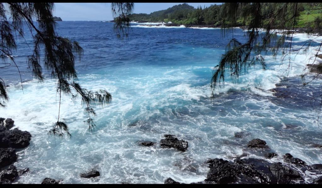 Maui, Hawaii - Page 2 Plage_11