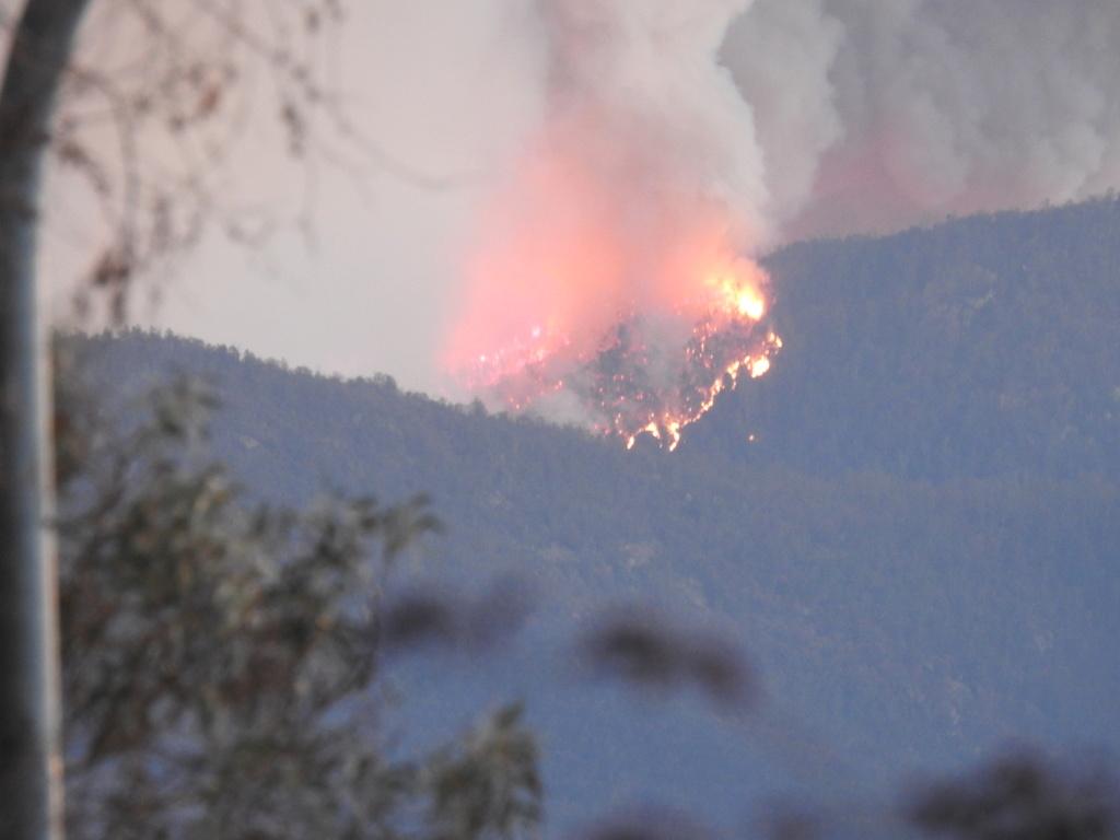 NSW Bush Fires - Page 3 Dscn0812