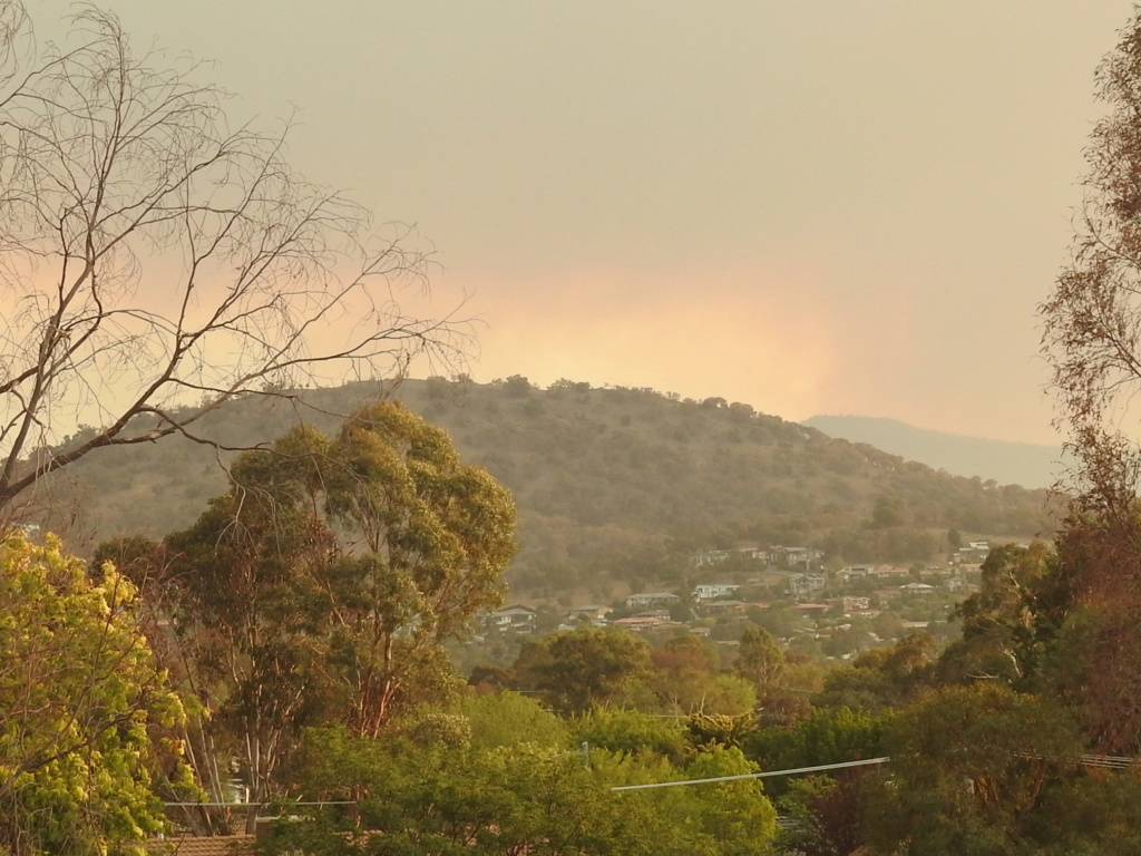 NSW Bush Fires - Page 3 Rscn0817