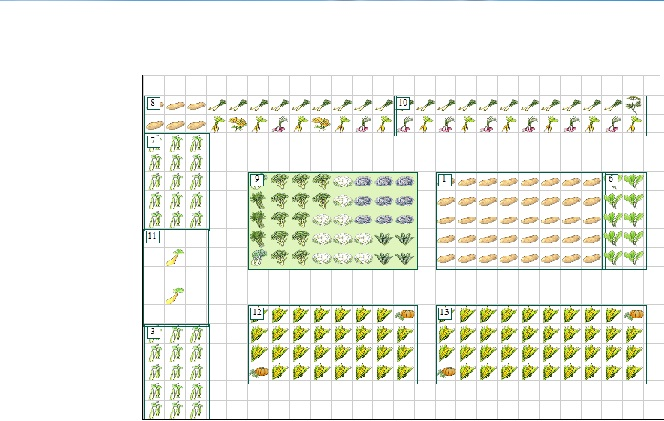 lets see your garden plan - Page 2 2013_b10