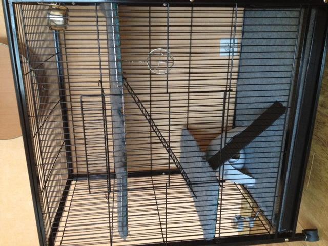 Ma nouvelle cage Photo15
