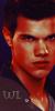 """Wanderland in London (Reapertura)(normal) """"Crossover de Twilight, Cazadores de sombras y Vampire diaries"""" 50x10010"""