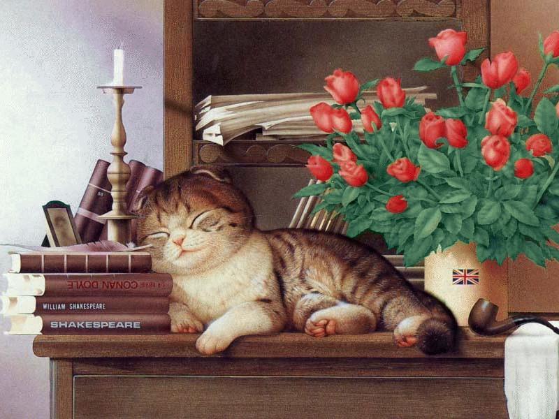 Makoto Muramatsu - японский художник забавных котов Makoto13