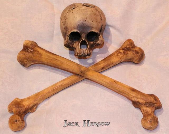 [Costumes] Capitaine Jack Sparrow & Angélica 24125710