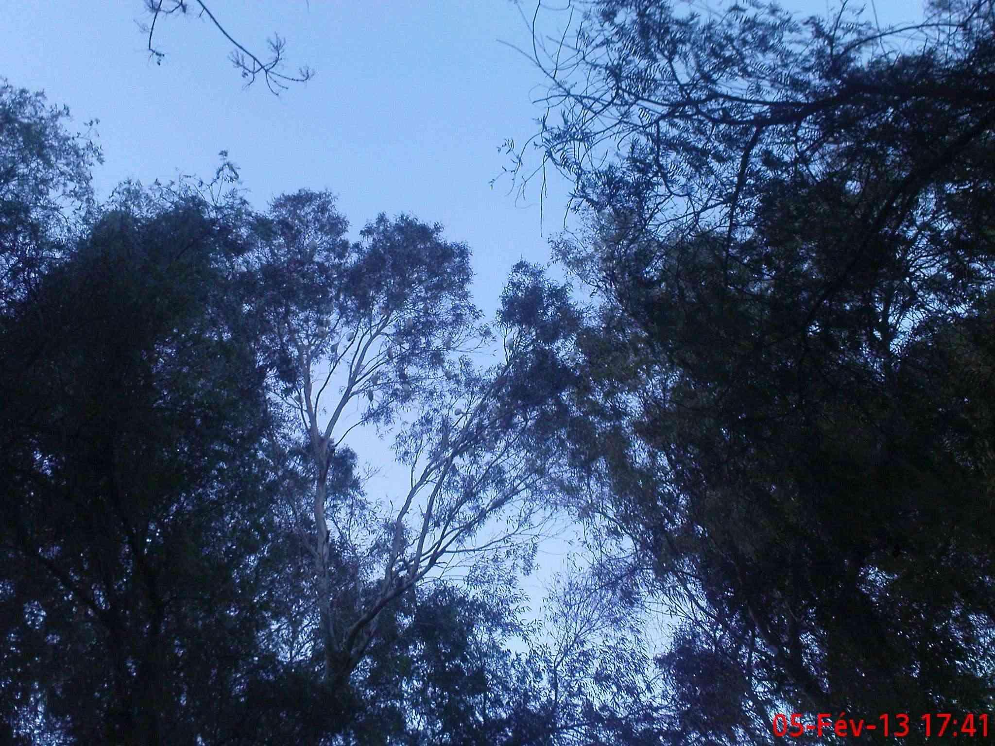 شاهد سحر وجمال الطبيعة في حمام المسخوطين Dsc02136