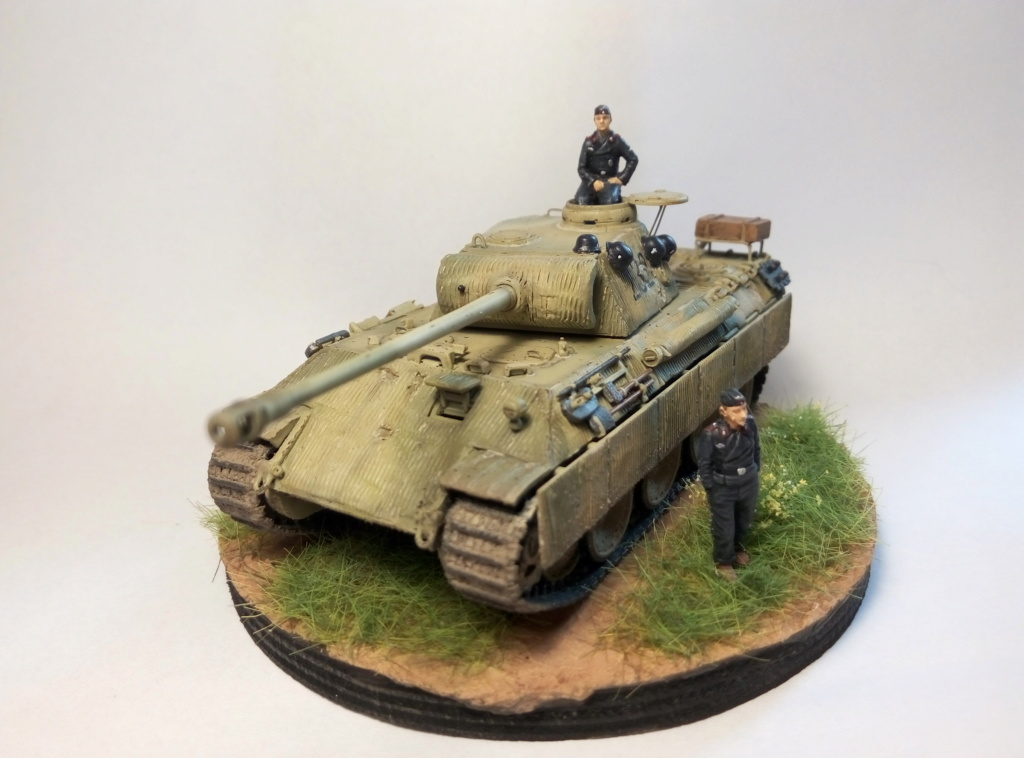 Panther Ausf D  - Page 2 P8082410