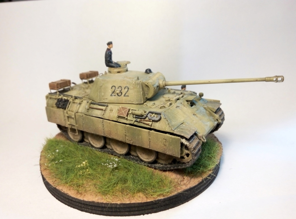 Panther Ausf D  - Page 2 P8082411