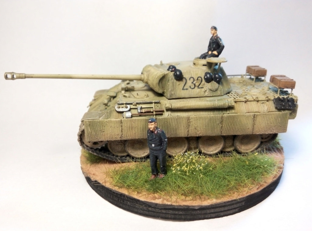 Panther Ausf D  - Page 2 P8082412
