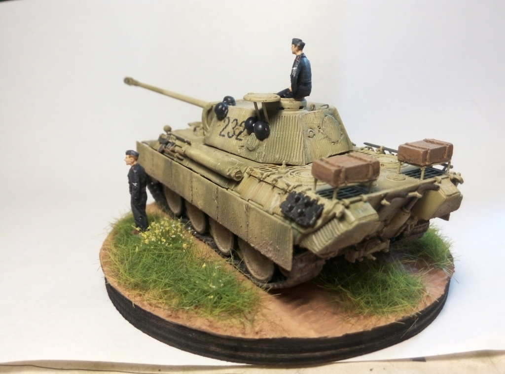 Panther Ausf D  - Page 2 P8082413