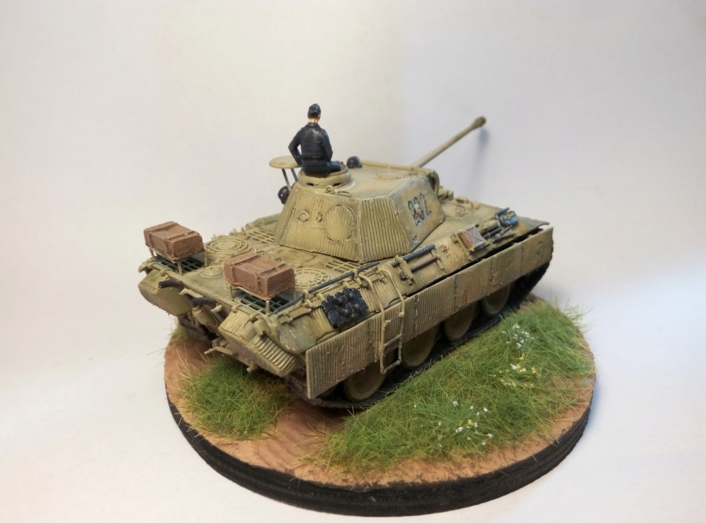 Panther Ausf D  - Page 2 P8082414