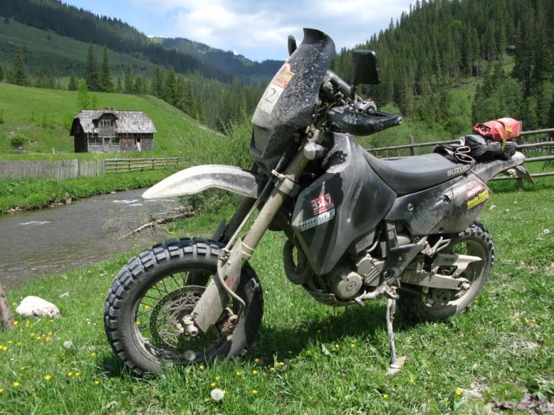 gamme  de pneus  53508710